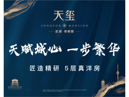 龙湖·天玺广告图